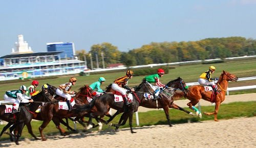 Horses racing on a race track