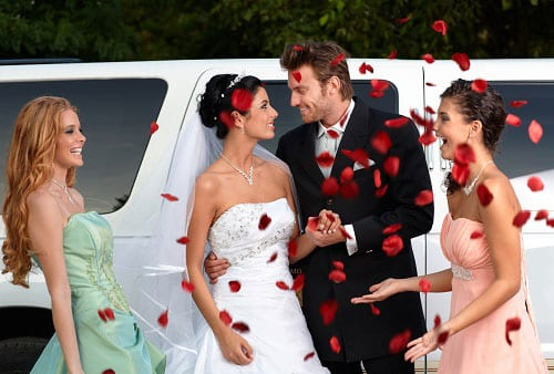 Wedding couple leaving limousine and showered with rose petals